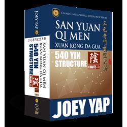 San Yuan Qi Men Xuan Kong Da Gua 540 Yin Structure Charts by Joey Yap