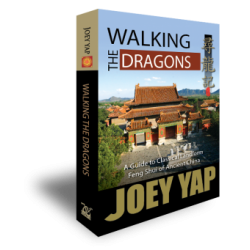 Walking the Dragons by Joey Yap