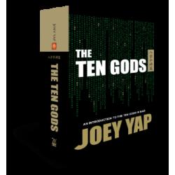 BaZi - The Ten God by Joey Yap