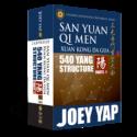 San Yuan Qi Men Xuan Kong Da Gua 540 Yang Structure Charts by Joey Yap