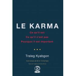 Le Karma. Ce qu'il est, ce qu'il n'est pas, pourquoi il est important - par Traleg Kyabgon